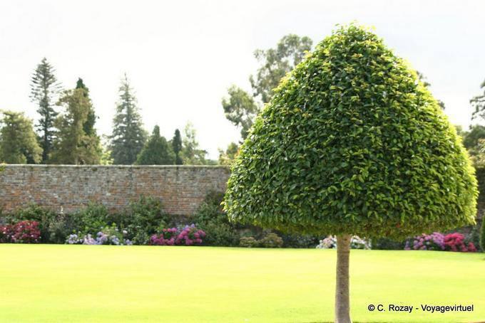 Jardin de Powerscourt, Irlande 5726