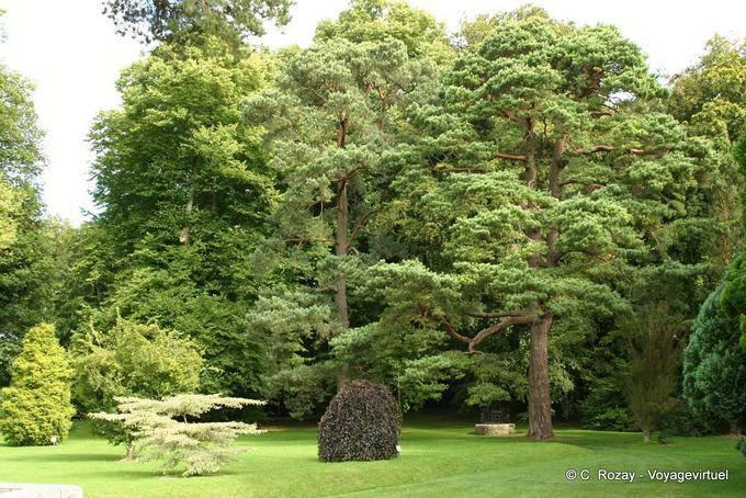 Jardin de Powerscourt, Irlande 5749