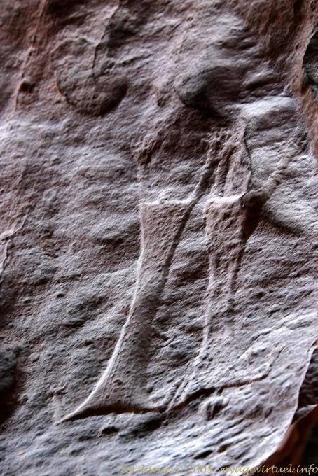 Wadi Rum 510