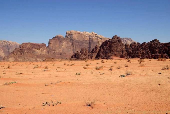 Wadi Rum 521