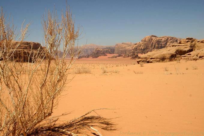Wadi Rum 574