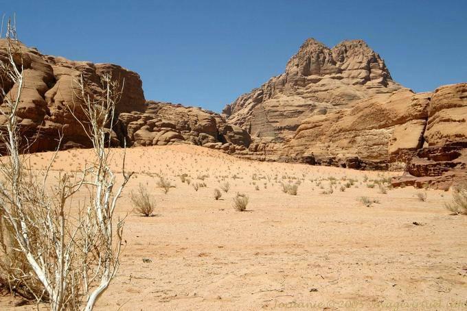 Wadi Rum 611