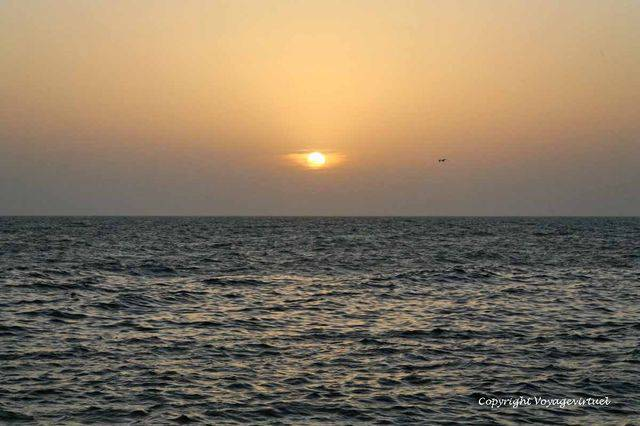 Tihama Al Hodeidah 3254