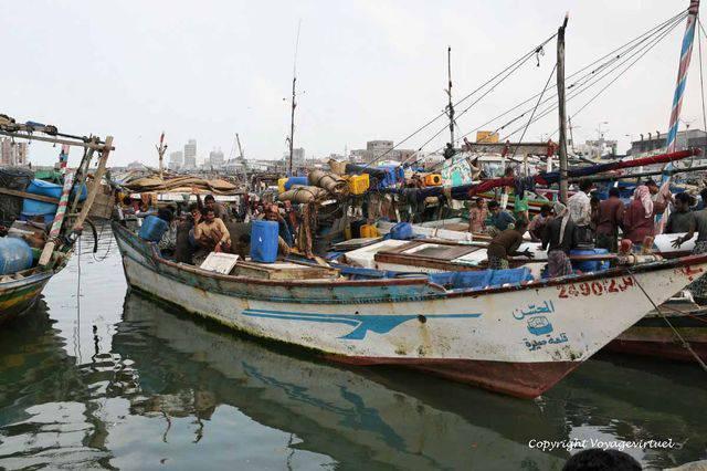 Tihama Al Hodeidah 3331