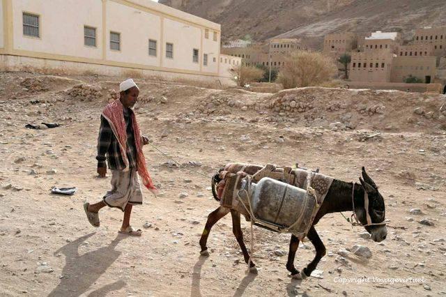 Wadi Do An 2396