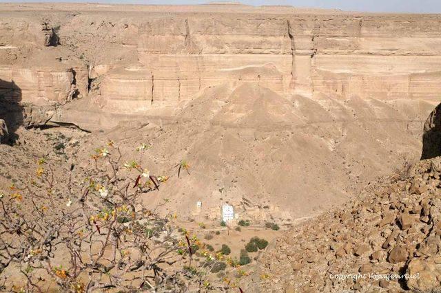 Wadi Do An 2485